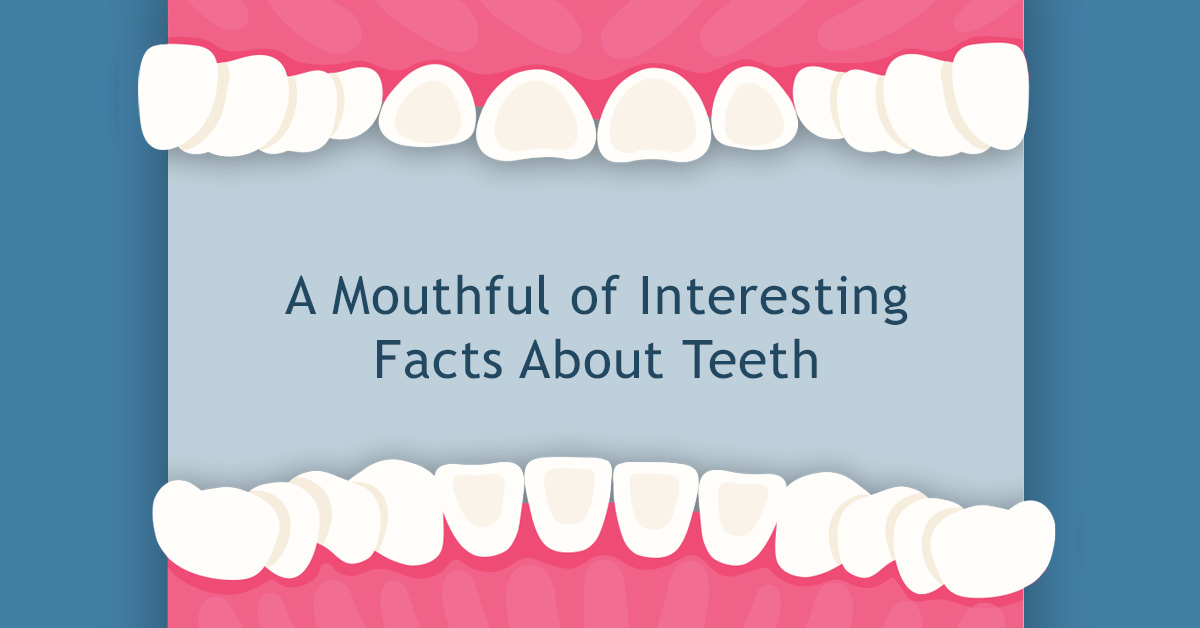 A Mouthful of Interesting Facts About Teeth